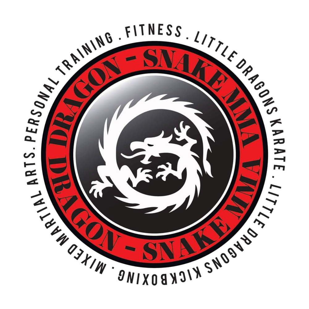 Dragon Snake MMA & Fitness